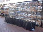Achterzeil (zwart) met raam<br />4.00m x 2.15m<br />1 week levertijd